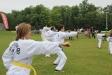 2014-08-27 - ITF-TAO 88 Dragons Outdoor Training