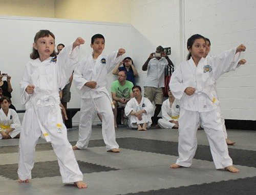2014-07-05 - Oakridge Taekwon-Do Belt Test